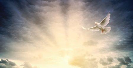 Άγιο Πνεύμα: Τι είναι; Ποια δύναμη έχει & τι δίνει στον πιστό;